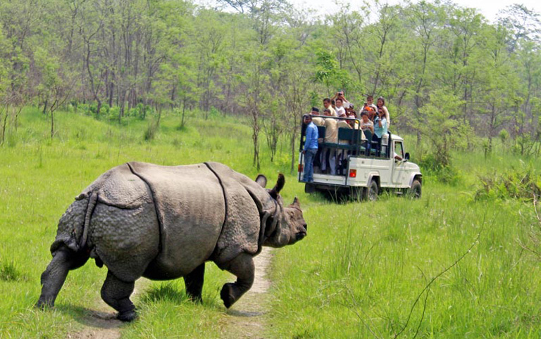 9 Days Kathmandu Valley with Chitwan & Pokhara Tour